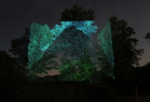 2013, Mountain video projected on trees Ulster County, NY with Share