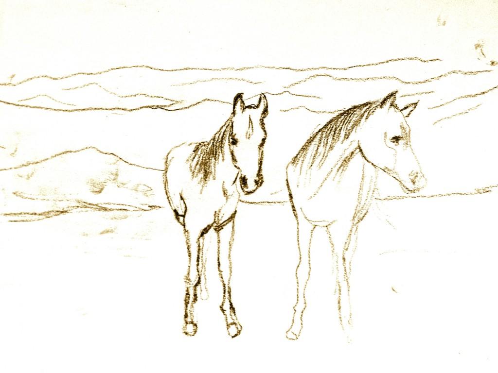 twp-horses-one