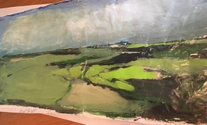 wall sized landscape 1 Govenor's island Oct 2017 7ft x 3 ft